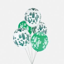 my-little-day-ballons-cactus