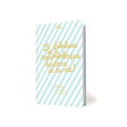 minus-editions_la-fabuleuse-et-rocambolesque-histoire-de-ta-vie-cahier-d-anniversaire