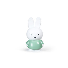 stempels-and-co_tirelire-s-lapin-miffy-vert