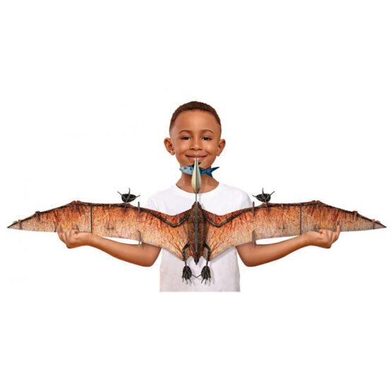 coffret livre et maquette 3d dinosaure le pteranodon - taille maquette