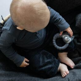 anneau raton laveur avec bébé