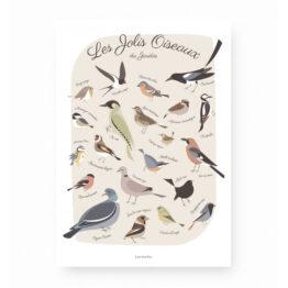 affiche les jolis oiseaux du jardin Lutin petit pois