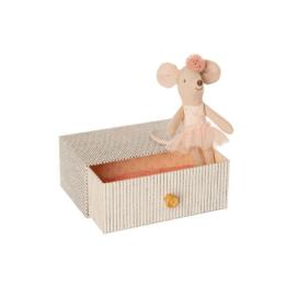 souris dans sa boite