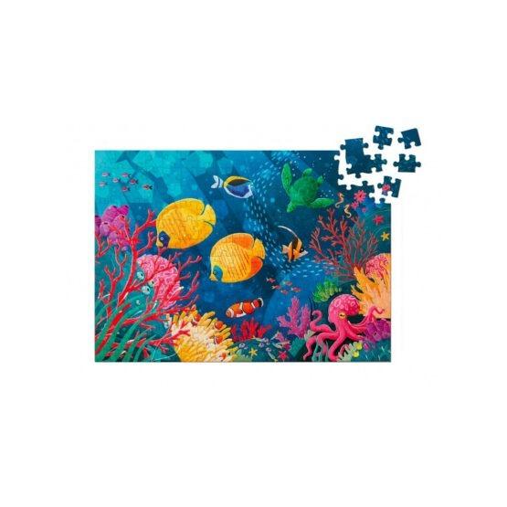SASSI puzzle recif corallien